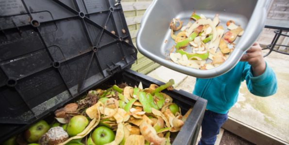 Reduce food waste and become a frugal foodie